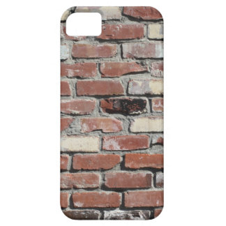 Old red brick wall iPhone SE/5/5s case