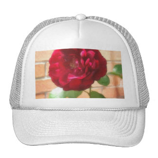 Old Red Rose 2 Painterly Mesh Hats