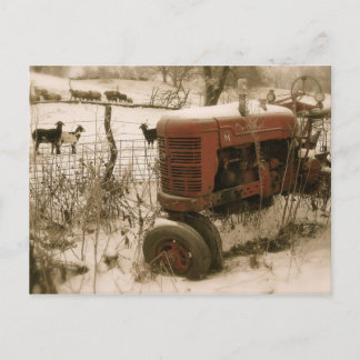 Old Red Tractor with Goats Christmas Postcard