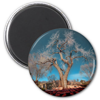Old Roots of Canyon Road 2 Inch Round Magnet