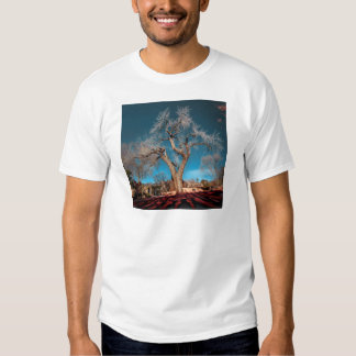 Old Roots of Canyon Road Tee Shirt