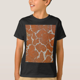 Old russet color on concrete T-Shirt