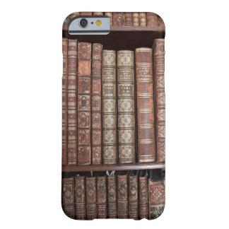 Old Rustic Book Spines Shelf Case