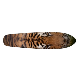 Old School Tiger Skateboard