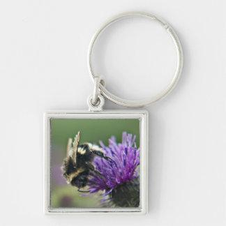 Old Scruffy Bee Keychain