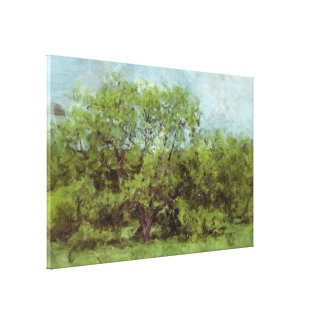 Old Shade Tree (Digital Painting from Photography) Stretched Canvas Print
