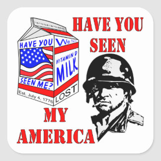 Old Soldier Have You Seen My Missing America Square Sticker