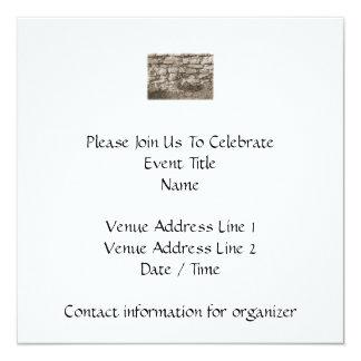 """Old Stone Garden Wall. Sepia Color. 5.25"""" Square Invitation Card"""
