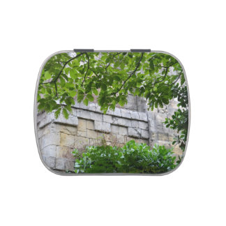 old stone wall framed in leaves jelly belly candy tin