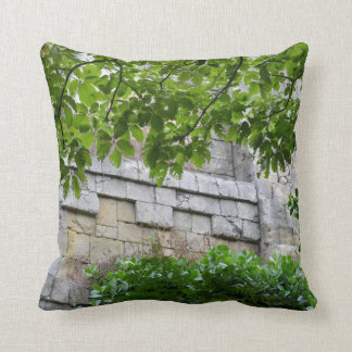 old stone wall framed in leaves pillow