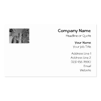Old Stone Walls and Sky. Double-Sided Standard Business Cards (Pack Of 100)