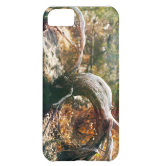Old Stump iPhone 5C Case