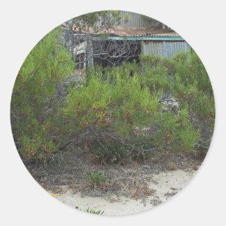old tin shack round sticker