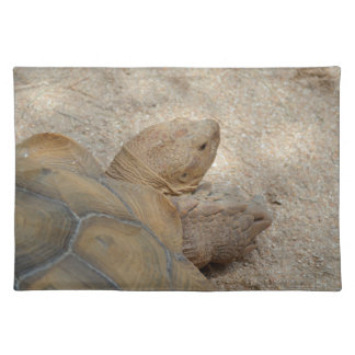 old tortoise reptile back view turtle animal cloth placemat