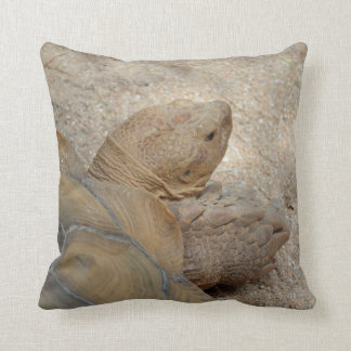 old tortoise reptile back view turtle animal throw pillow