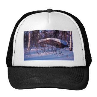 Old Trapper's Cabin Trucker Hat