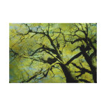Old tree2 gallery wrapped canvas
