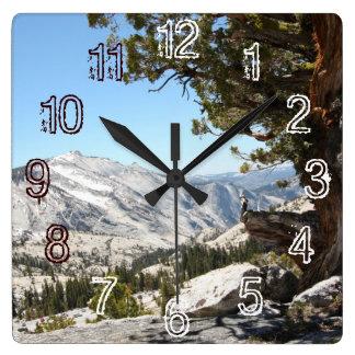 Old Tree at Yosemite National Park Square Wall Clock