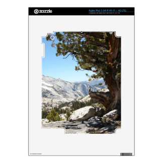 Old Tree at Yosemite National Park Decal For iPad 3