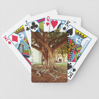 Old Tree Bicycle Playing Cards