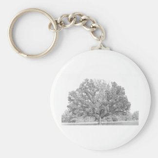 Old tree black and white basic round button keychain
