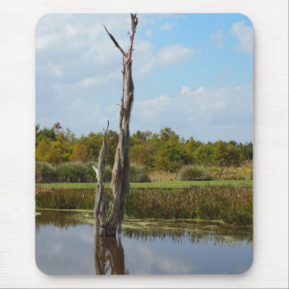 Old Tree Covered in Moss Mouse Pad