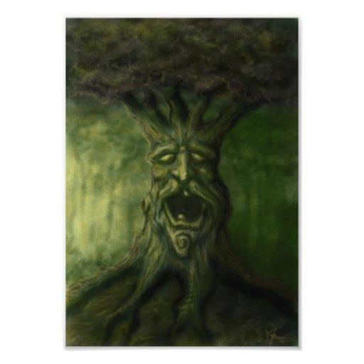 old tree fantasy photo print