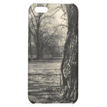 Old Tree iPhone Case iPhone 5C Covers