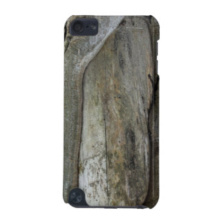 Old Tree iPod Touch 5G Cover