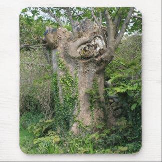 Old Tree: Mousepad