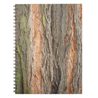 old tree note books