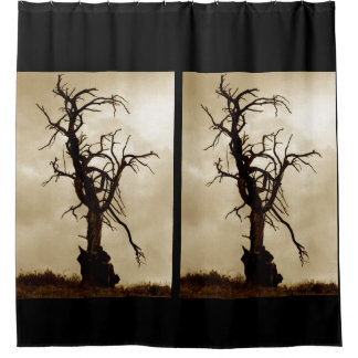 Old tree photo shower curtain