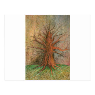 Old Tree Postcard