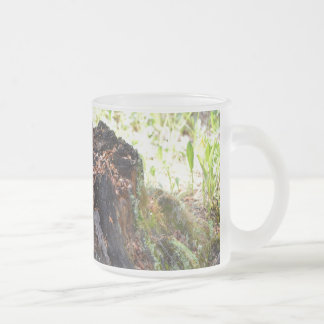 Old Tree Stump Frosted Glass Mug