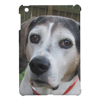 Old Treeing Walker Coonhound Case For The iPad Mini