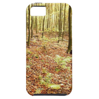 OLD TREES WITH LEAVES ON GROUND IN AUTUMN iPhone SE/5/5s CASE