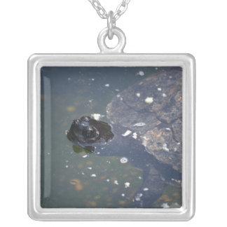 old turtle swimming custom jewelry