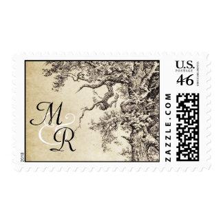 old vintage tree drawing postage stamps