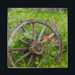 """Old wagon wheel in historic old gold town 3 wood coaster<br><div class=""""desc"""">Michael DeFreitas / DanitaDelimont.com 