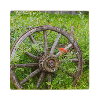 Old wagon wheel in historic old gold town 3 wood coaster