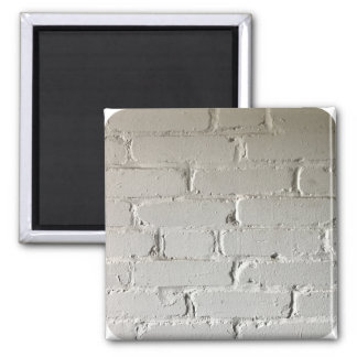 Old white brick wall with nooks and crannies magnet