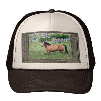 Old window horses 2 trucker hat