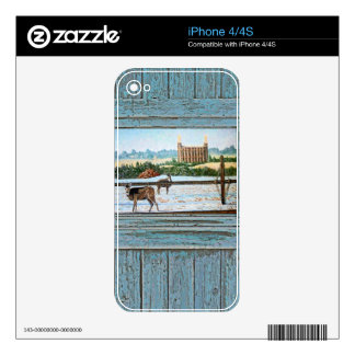 Old window temple blue iPhone 4 skin