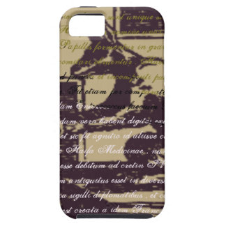 Old wolf iPhone 5 cases