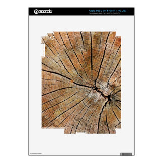 Old Wood Grain Skins For iPad 3