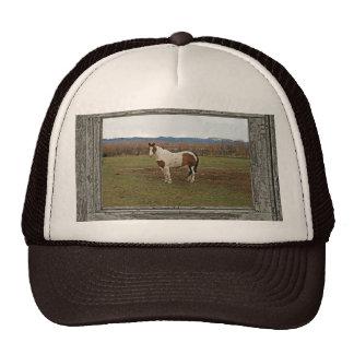Old wood window paint horse trucker hat
