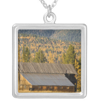 Old wooden barn with autumn tamaracks near silver plated necklace