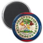Old Wooden Belize Flag 2 Inch Round Magnet