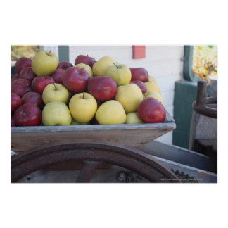 Old Wooden Cider Press Apples Photograph Print