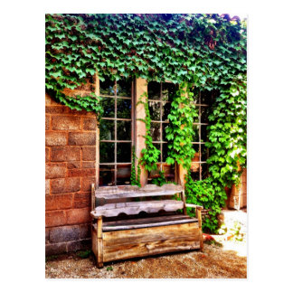 Old Wooden Country Bench Ivy Vines Postcard